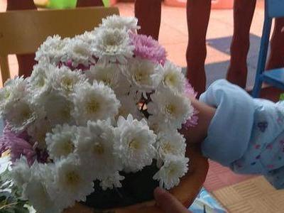 kwiaty w dyni 01